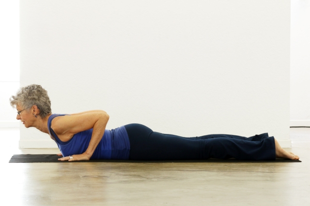 Cobra to Upward-Facing Dog/Bhujangasana to Urdhva Mukha Svanasana