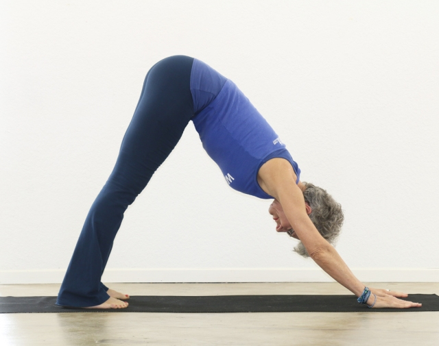 Downward-Facing Dog/Adho Mukha Svanasana